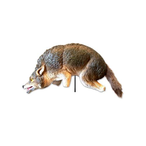 3-D Coyote Lifelike, Full-Size Predator
